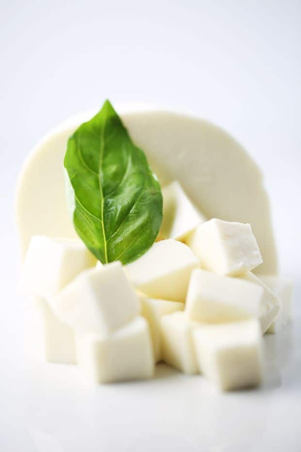 Fresh mozzarella cheese