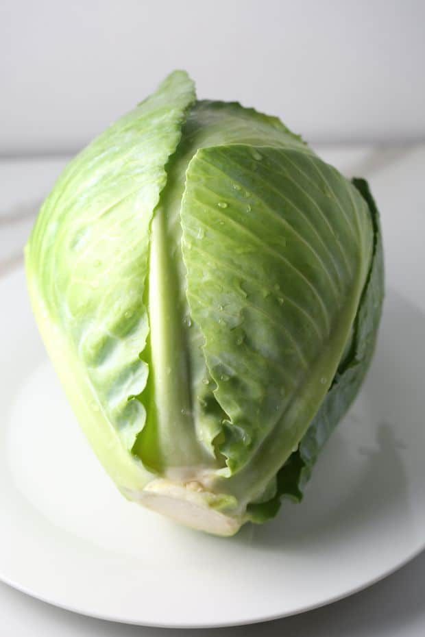 stuffed cabbage rolls fresh cabbage