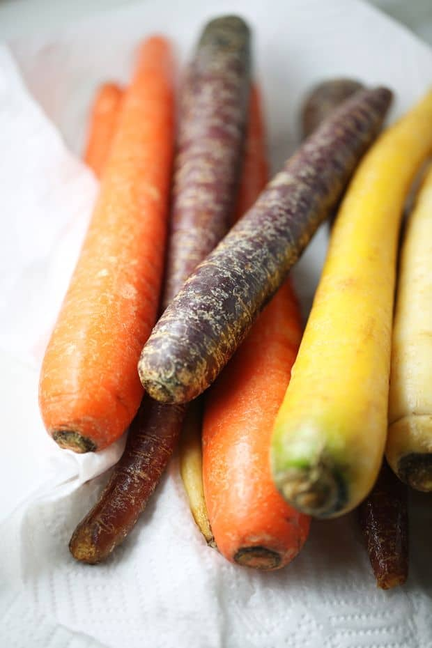 Healthy Multi colored Carrots